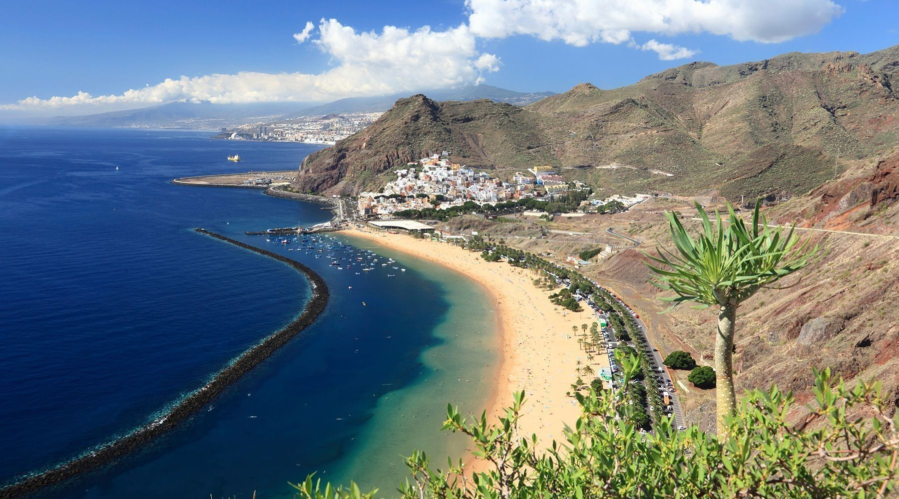 Canary Islands Image